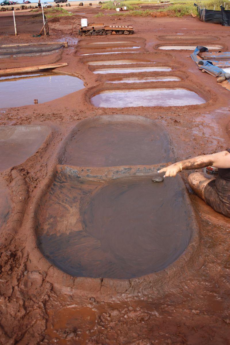 Salt Pond 011